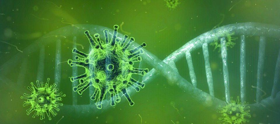coronavirus-4833754_960_720